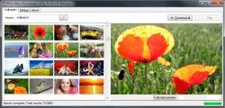 Flickr Mass Wallpaper Downloader screenshot
